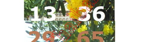 Thai lottery 1 June 2015 tip